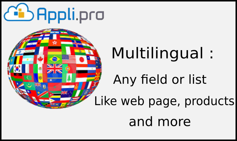 multilingual application