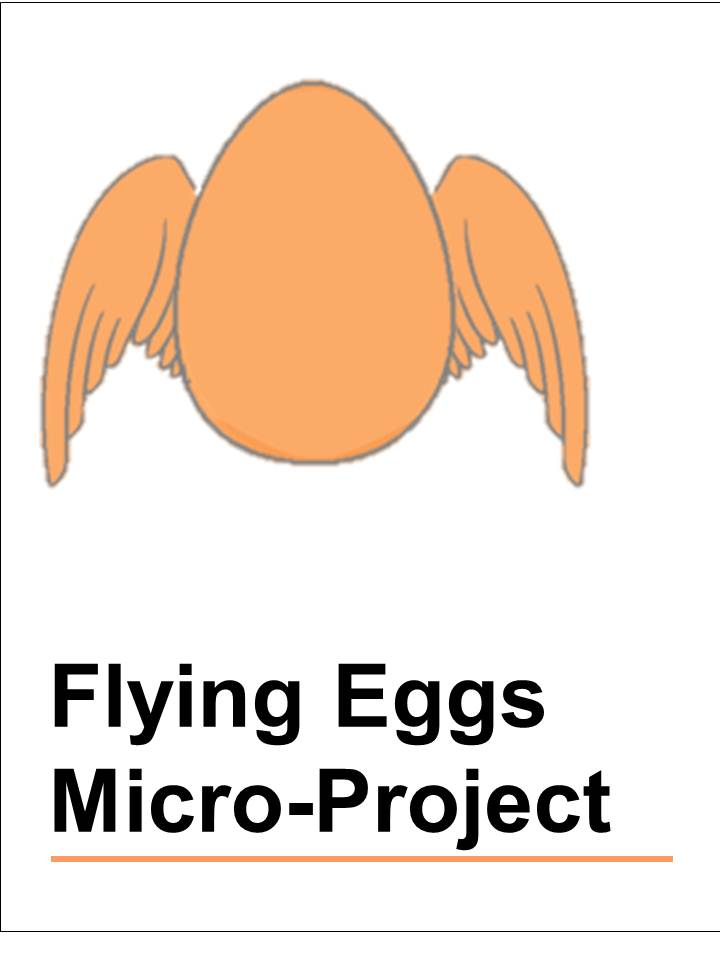 Flying eggs micro project