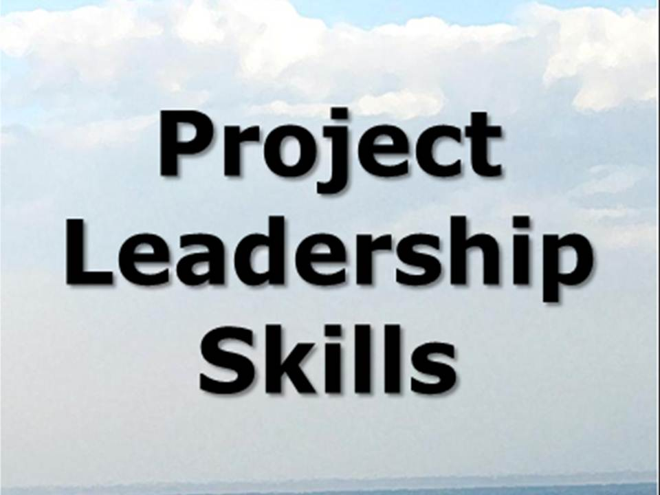 project leadership skills