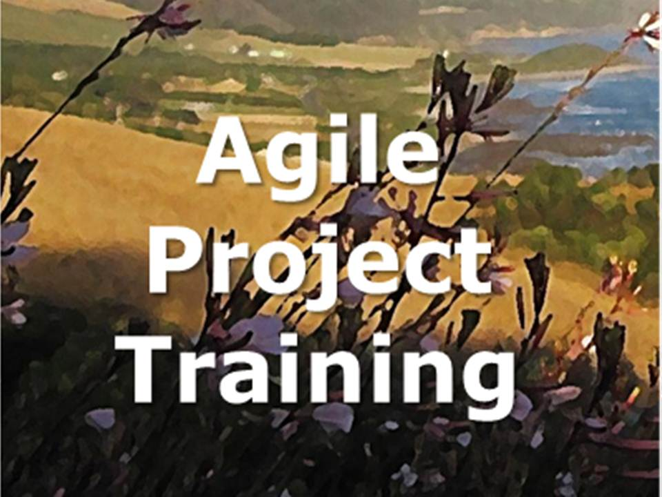 agile project training