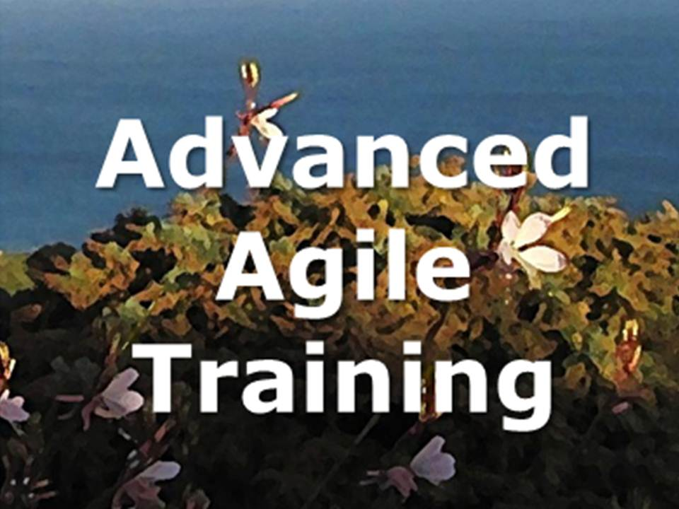advanced agile training